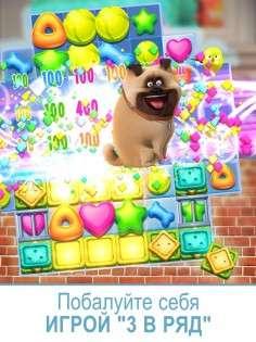 Secret Life of Pets Unleashed™ 1.0.0.27